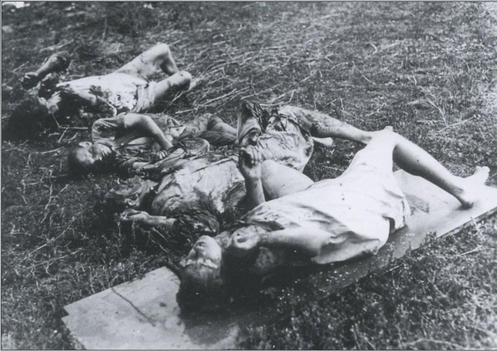 Картинки по запросу жертвы бандеровцев
